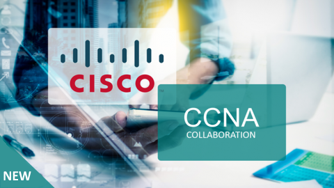 2018 latest CCNA BrainDumps